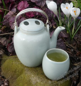 Vietnamese celadon teapot in heuchera watermarked